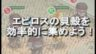 【オルサガ ポーカー】エピロスの貝殻を効率的に集める方法は?